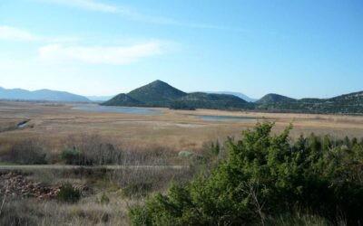 """Okrugli stol na temu """"Tršćaci – vrednovanje usluga slatkovodnih ekosustava"""""""
